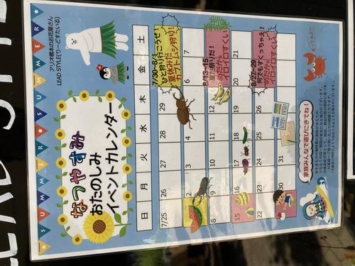 夏休みイベントカレンダー