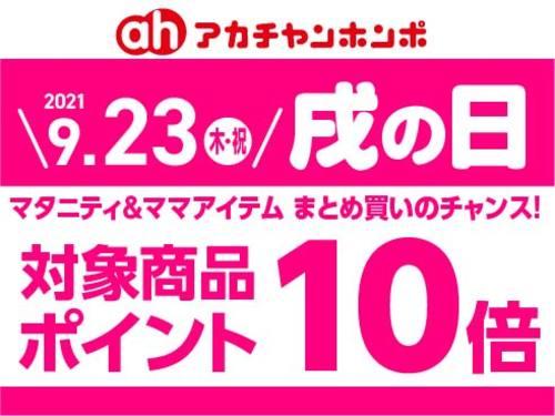 【戌の日】9/23(木・祝)はマタニティ商品がお得☆