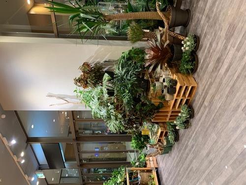リードスタイルアリオ橋本店内画像